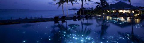 Underwater Starry Skies